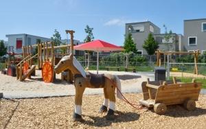 holz, wood, robinie, robinia, spielplatz, playground, bauernhof, farm, pferd, horse