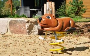 holz, wood, robinie, robinia, spielplatz, playground, federwipper, springer, Biber, beaver