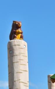 holz, wood, robinie, robinia, spielplatz, playground, kletterwald, climbing forest, birken, birch trees, eichhoernchen, sqirrel