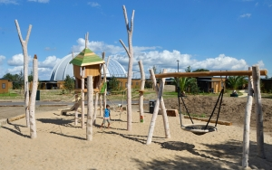 holz, wood, robinie, robinia, spielplatz, playground, tropical island resort, kletterwald, climbing forest, birke, birch