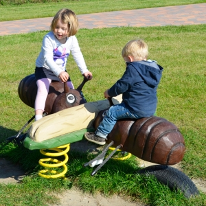 holz, wood, robinie, robinia, spielplatz, playground, wippe, seasaw, ameise, ant