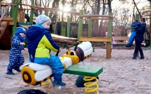 holz, wood, robinie, robinia, spielplatz, playground, tierpark, zoo, bienen, bees, luckenwalde