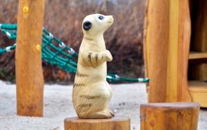 holz, wood, robinie, robinia, spielplatz, playground, tierpark, zoo, erdmaenchen, luckenwalde