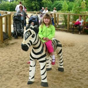 holz, wood, robinie, robinia, spielplatz, playground, spielskulptur, play sculpture, zebra
