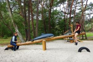 holz, wood, robinie, robinia, spielplatz, playground, ostsee, baltic sea, maritim, maritime, wippe, seesaw, delphin, dophin